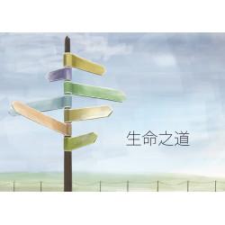Chino simplificado: The way...
