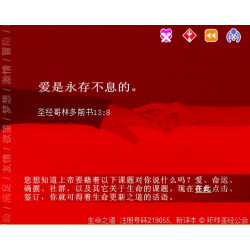 Love - Flash presentation (Chinese Simplified)