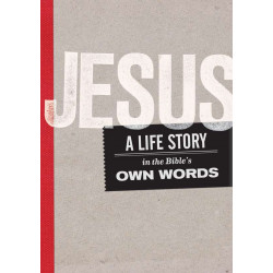 E-book - Jesus: A Life Story (English)