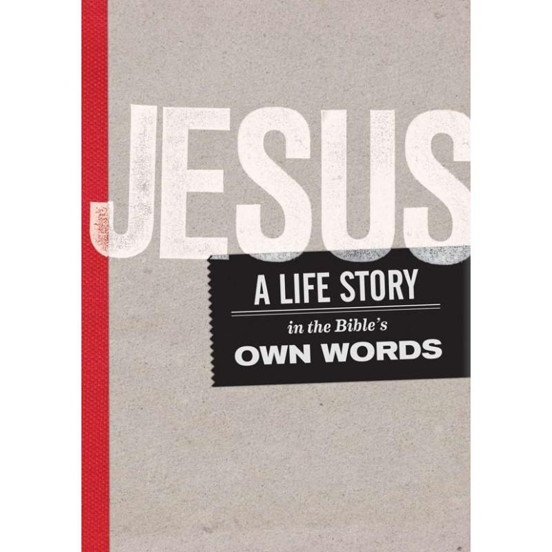 E-book - Jesus: A Life Story (English)